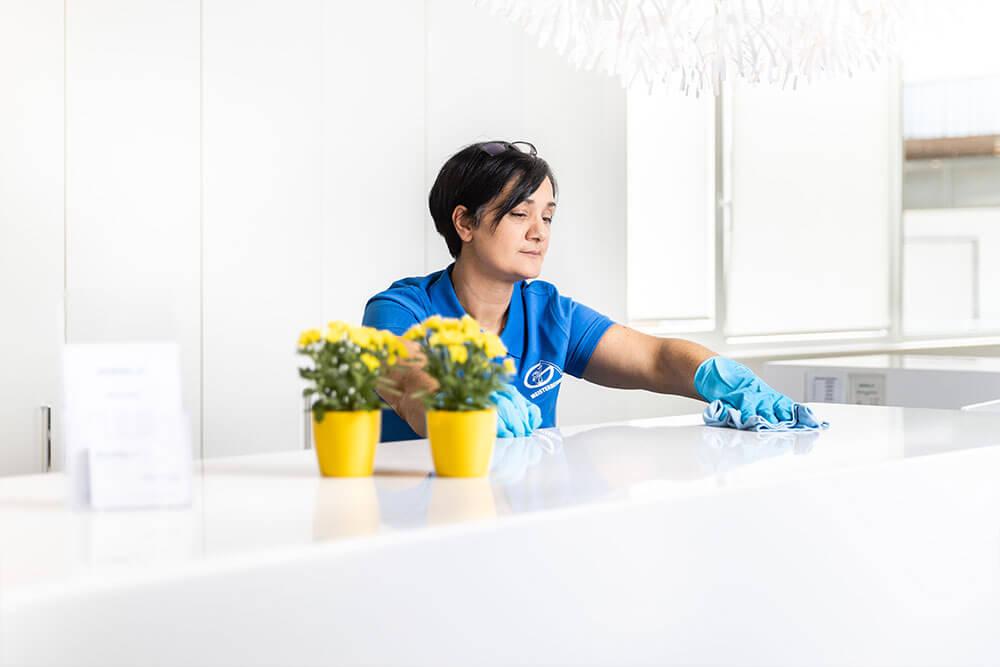 Reinigung Private Haushalte